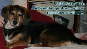 Raini's Beautiful Spirit